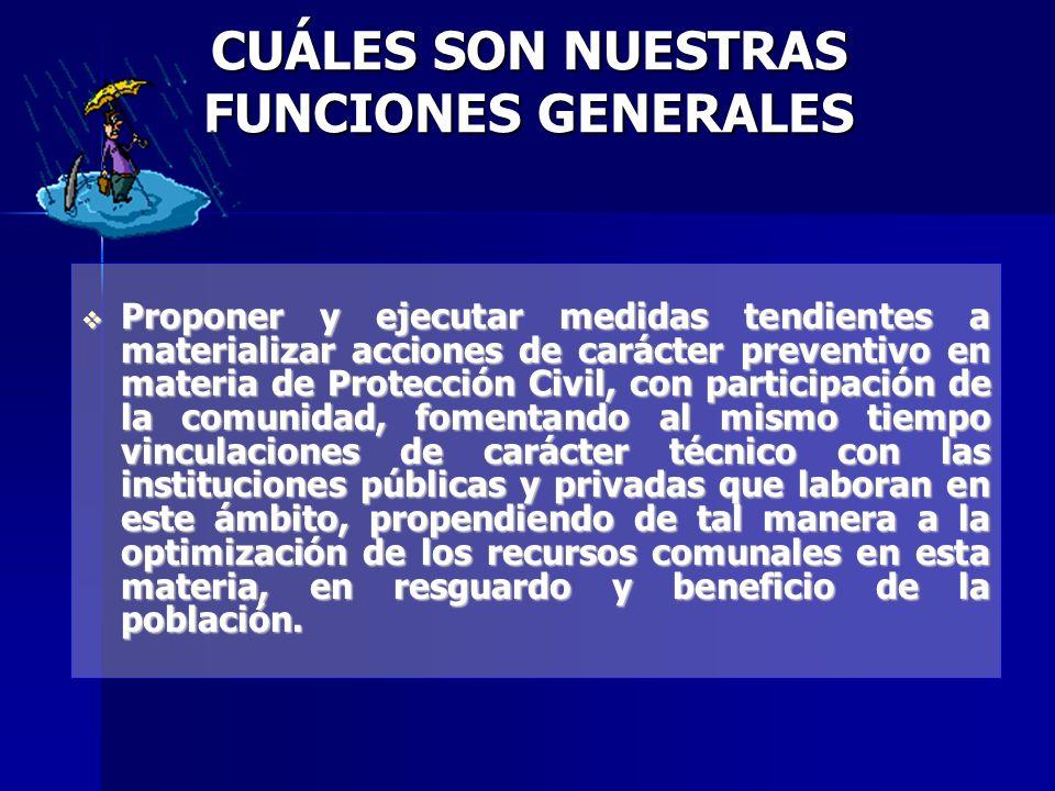 METAS PARA EL AÑO 2007 Constituir el Consejo Comunal de Discapacidad para la comuna de Punta Arenas.