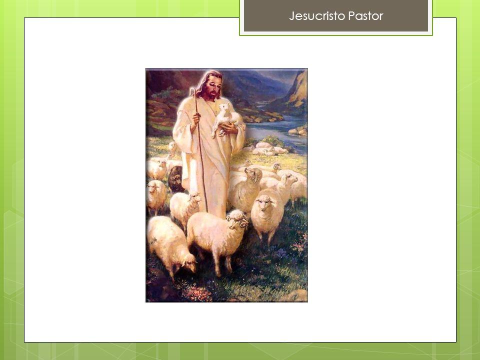 Jesucristo Pastor