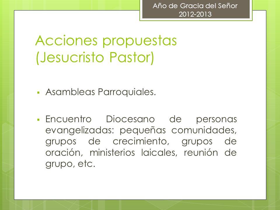 Acciones propuestas (Jesucristo Pastor) Asambleas Parroquiales. Encuentro Diocesano de personas evangelizadas: pequeñas comunidades, grupos de crecimi