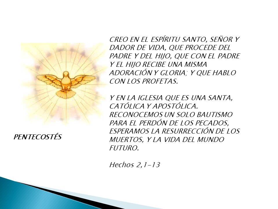 PENTECOSTÉS CREO EN EL ESPÍRITU SANTO, SEÑOR Y DADOR DE VIDA, QUE PROCEDE DEL PADRE Y DEL HIJO, QUE CON EL PADRE Y EL HIJO RECIBE UNA MISMA ADORACIÓN