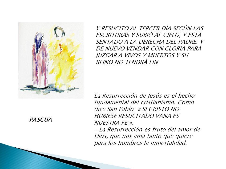 PENTECOSTÉS CREO EN EL ESPÍRITU SANTO, SEÑOR Y DADOR DE VIDA, QUE PROCEDE DEL PADRE Y DEL HIJO, QUE CON EL PADRE Y EL HIJO RECIBE UNA MISMA ADORACIÓN Y GLORIA; Y QUE HABLO CON LOS PROFETAS.