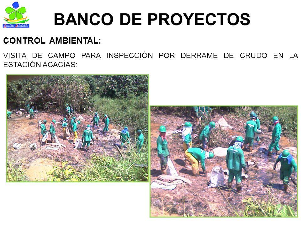 BANCO DE INFORMACIÓN TOTAL CONCEPTOS DE USO DE SUELO CANTIDAD906 VALOR TOTAL RECAUDADO $ 7.519.000 TOTAL CERTIFICACIONES DE ESTRATOS URBANOS CANTIDAD1.370 VALOR TOTAL RECAUDADO $ 11.371.000 TOTAL CERTIFICACIONES DE ESTRATOS RURALES CANTIDAD106 VALOR TOTAL RECAUDADO $ 879.800 TOTAL CERTIFICACIONES DE ZONA ALTO RIESGO CANTIDAD177 VALOR TOTAL RECAUDADO $ 1.469.100 RESULTADOS AÑO 2009 VALOR TOTAL RECAUDADO AREA DE BANCO DE INFORMACIÓN AÑO 2009: $21.238.900