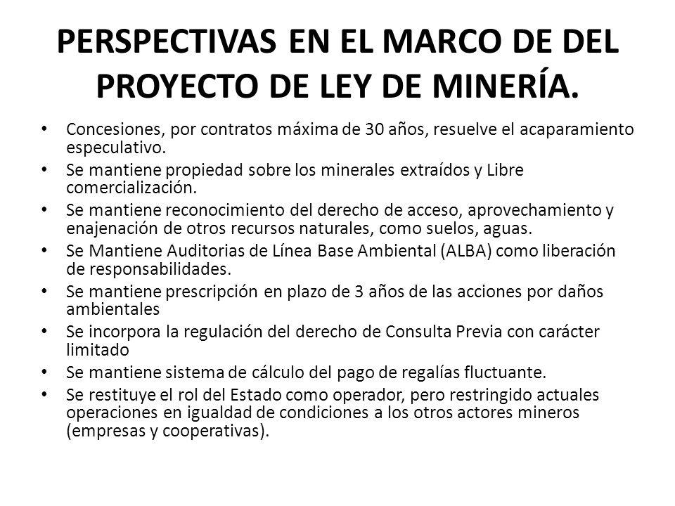 PERSPECTIVAS EN EL MARCO DE DEL PROYECTO DE LEY DE MINERÍA. Concesiones, por contratos máxima de 30 años, resuelve el acaparamiento especulativo. Se m