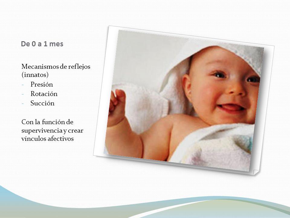De 0 a 1 mes Mecanismos de reflejos (innatos) - Presión - Rotación - Succión Con la función de supervivencia y crear vínculos afectivos