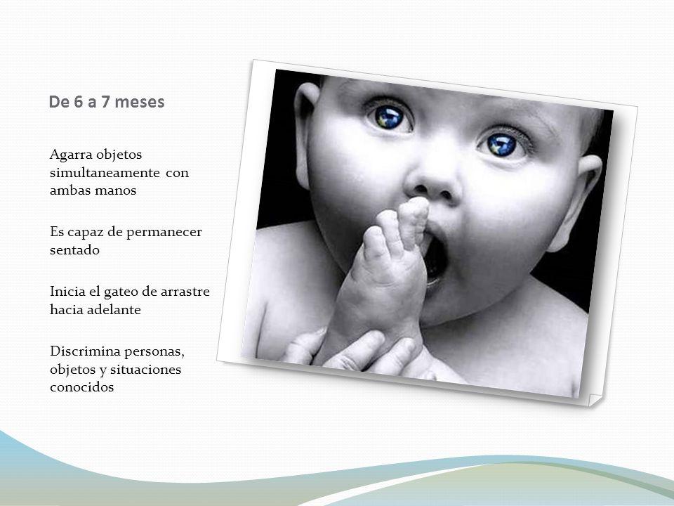 Influencia de la natación en el desarrollo del bebé podría definirse como una experiencia afectiva, recreativa, placentera y estimulante