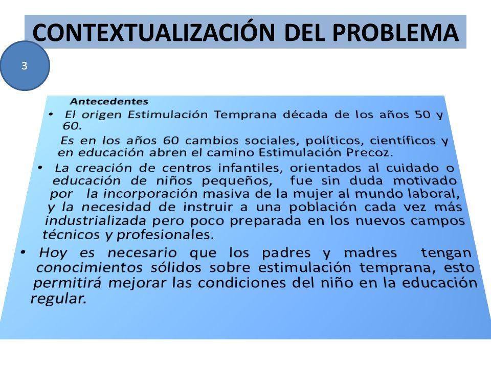 CONTEXTUALIZACIÓN DEL PROBLEMA 3