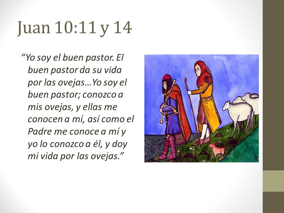 Juan 10:11 y 14 Yo soy el buen pastor. El buen pastor da su vida por las ovejas…Yo soy el buen pastor; conozco a mis ovejas, y ellas me conocen a mí,