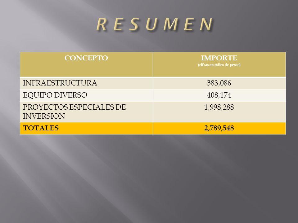 CONCEPTOIMPORTE (cifras en miles de pesos) INFRAESTRUCTURA383,086 EQUIPO DIVERSO408,174 PROYECTOS ESPECIALES DE INVERSION 1,998,288 TOTALES2,789,548