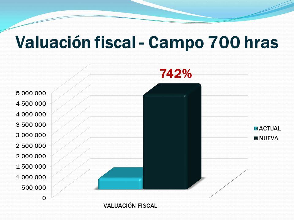 Valuación fiscal - Campo 700 hras 742%