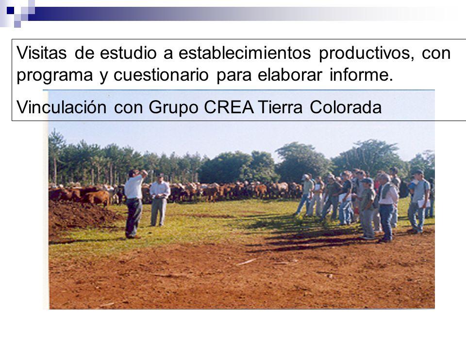 Visitas de estudio a establecimientos productivos, con programa y cuestionario para elaborar informe. Vinculación con Grupo CREA Tierra Colorada