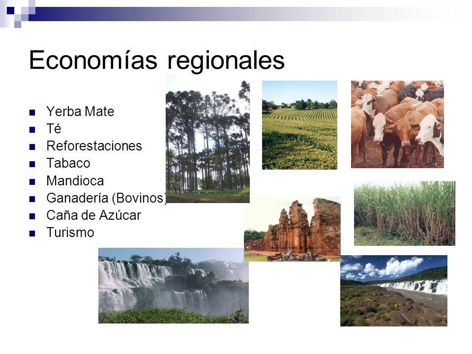 Economías regionales Yerba Mate Té Reforestaciones Tabaco Mandioca Ganadería (Bovinos) Caña de Azúcar Turismo