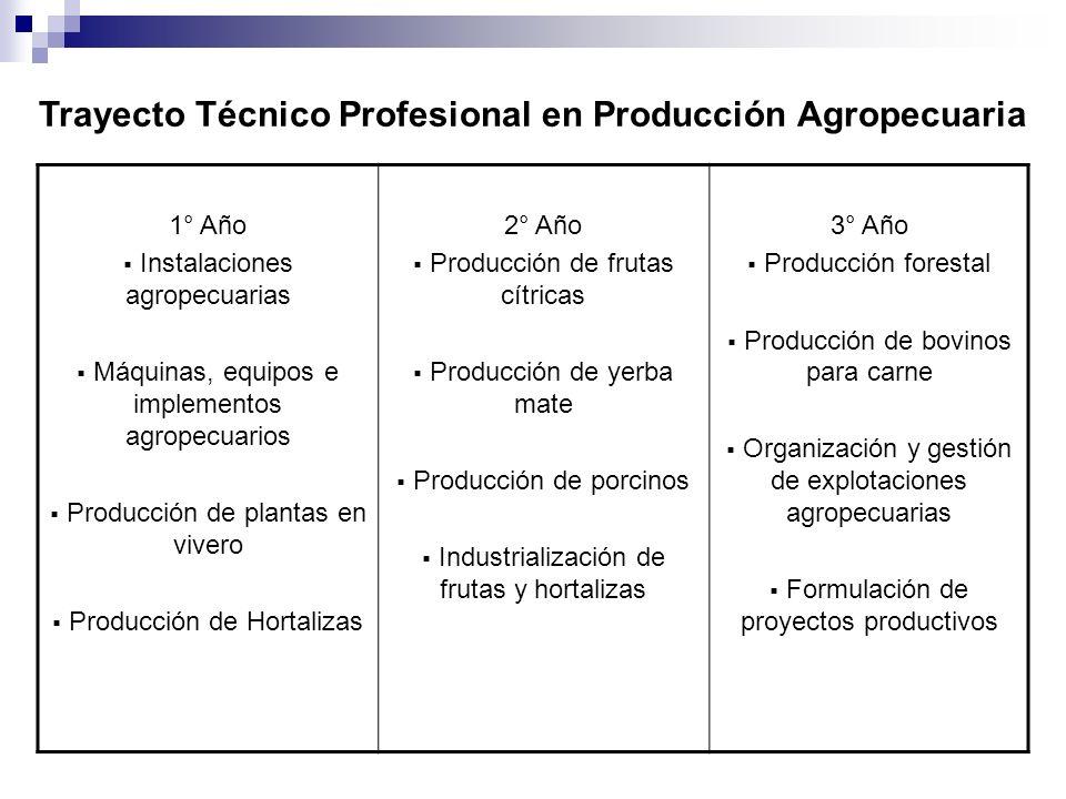 Trayecto Técnico Profesional en Producción Agropecuaria 1° Año Instalaciones agropecuarias Máquinas, equipos e implementos agropecuarios Producción de