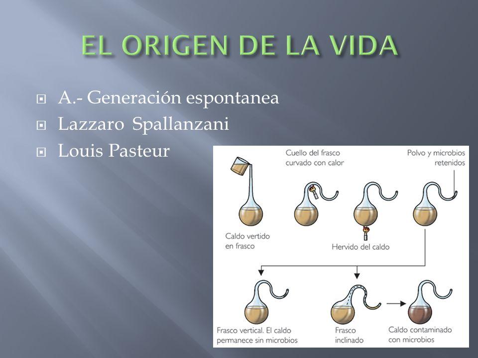 A.- Generación espontanea Lazzaro Spallanzani Louis Pasteur