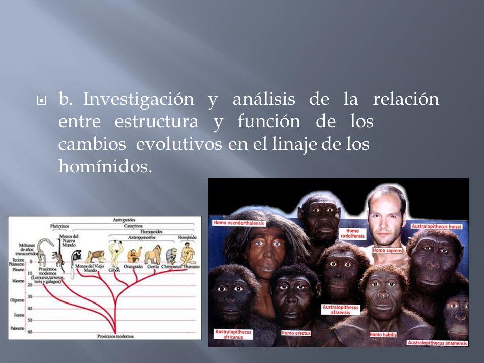 c. Valoración de la aparición y desarrollo del lenguaje en la evolución cultural del hombre.
