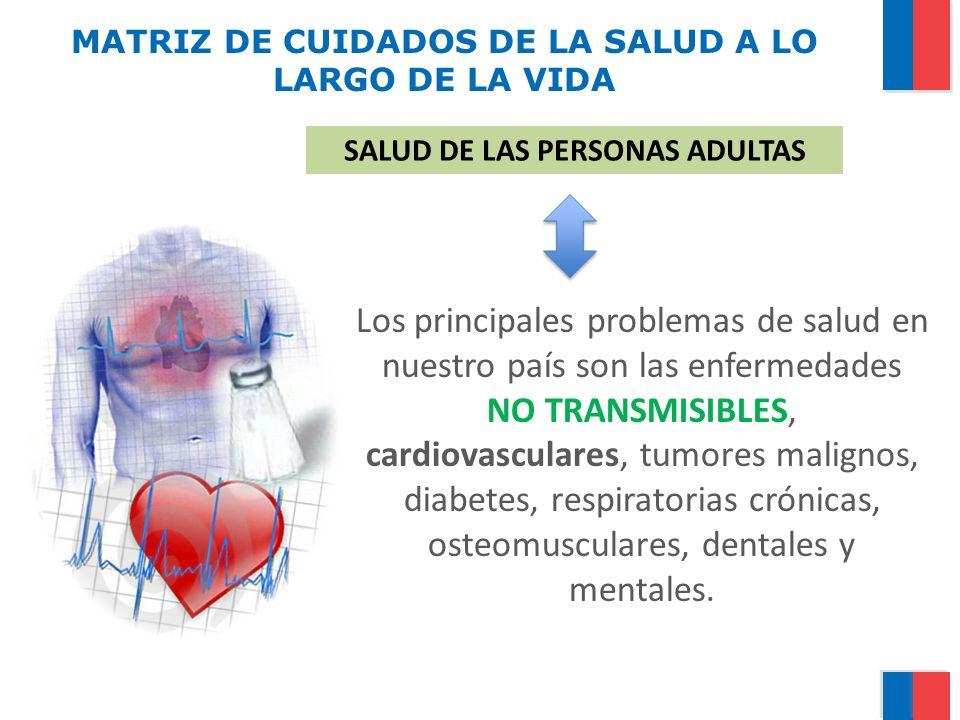 MATRIZ DE CUIDADOS DE LA SALUD A LO LARGO DE LA VIDA Los principales problemas de salud en nuestro país son las enfermedades NO TRANSMISIBLES, cardiov
