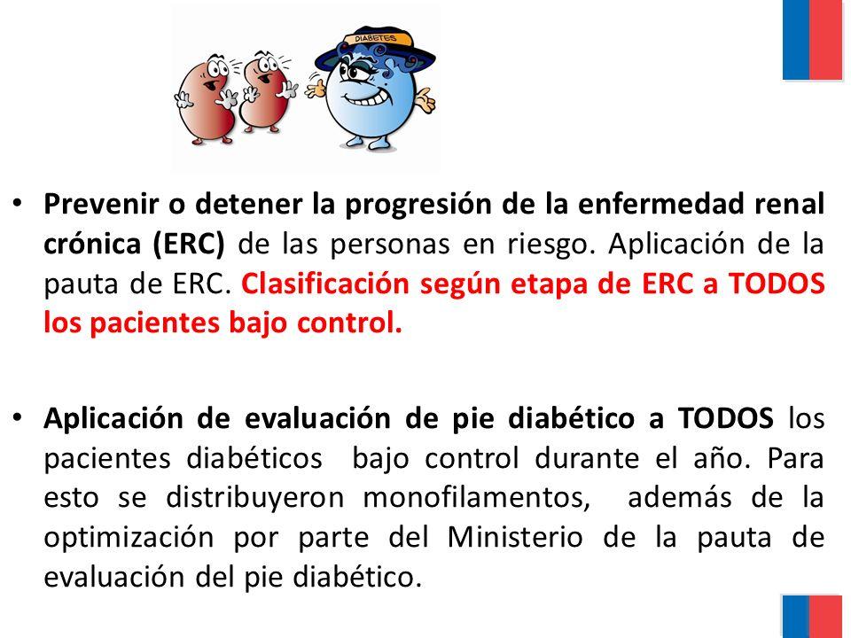 Prevenir o detener la progresión de la enfermedad renal crónica (ERC) de las personas en riesgo. Aplicación de la pauta de ERC. Clasificación según et