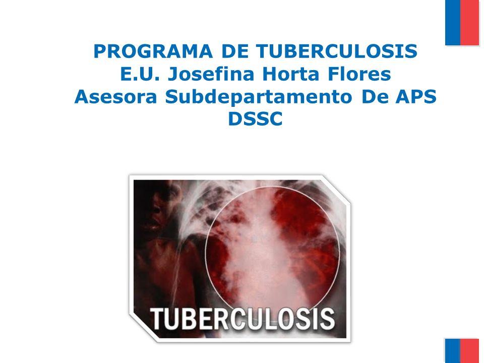 PROGRAMA DE TUBERCULOSIS E.U. Josefina Horta Flores Asesora Subdepartamento De APS DSSC