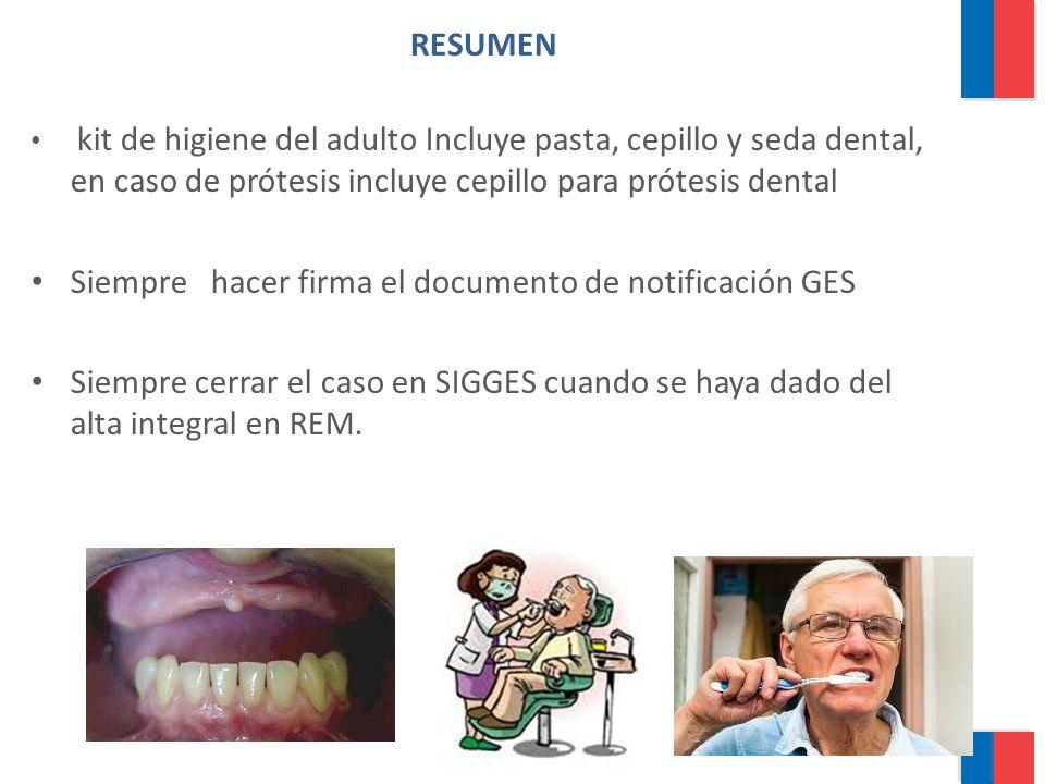 RESUMEN kit de higiene del adulto Incluye pasta, cepillo y seda dental, en caso de prótesis incluye cepillo para prótesis dental Siempre hacer firma e