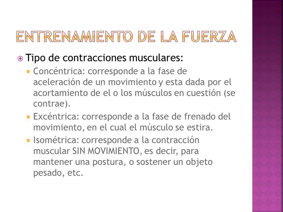 Tipo de contracciones musculares: Concéntrica: corresponde a la fase de aceleración de un movimiento y esta dada por el acortamiento de el o los músculos en cuestión (se contrae).