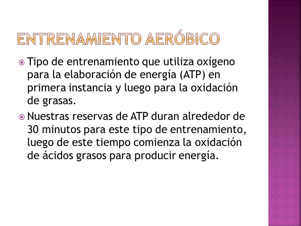Tipo de entrenamiento que utiliza oxígeno para la elaboración de energía (ATP) en primera instancia y luego para la oxidación de grasas.