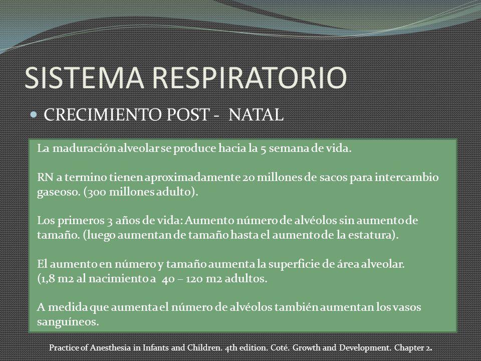 SISTEMA RESPIRATORIO CRECIMIENTO POST - NATAL La maduración alveolar se produce hacia la 5 semana de vida. RN a termino tienen aproximadamente 20 mill