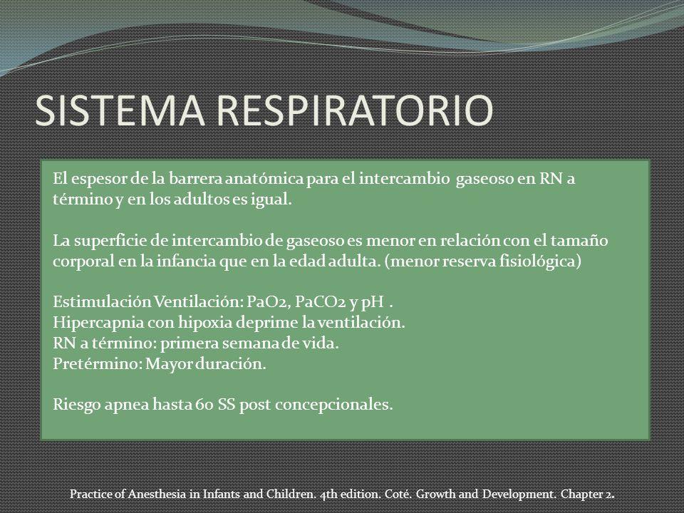 SISTEMA RESPIRATORIO El espesor de la barrera anatómica para el intercambio gaseoso en RN a término y en los adultos es igual. La superficie de interc