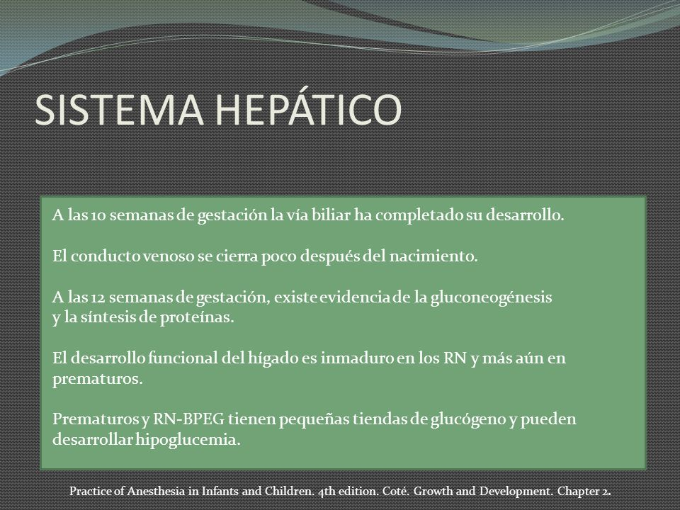 SISTEMA HEPÁTICO A las 10 semanas de gestación la vía biliar ha completado su desarrollo. El conducto venoso se cierra poco después del nacimiento. A