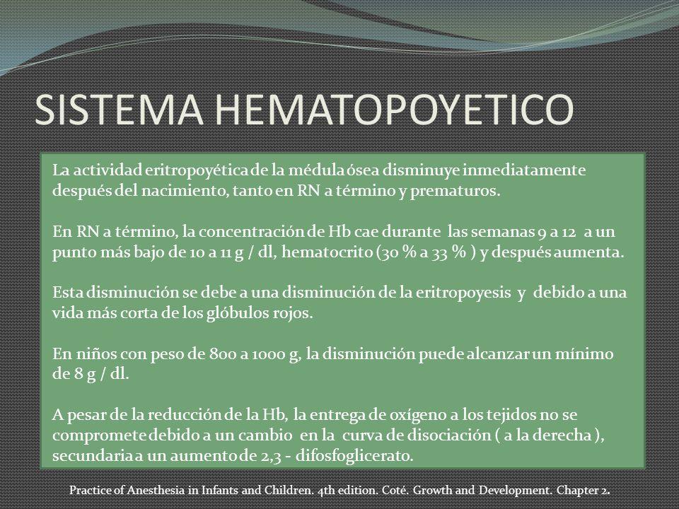 SISTEMA HEMATOPOYETICO La actividad eritropoyética de la médula ósea disminuye inmediatamente después del nacimiento, tanto en RN a término y prematuros.