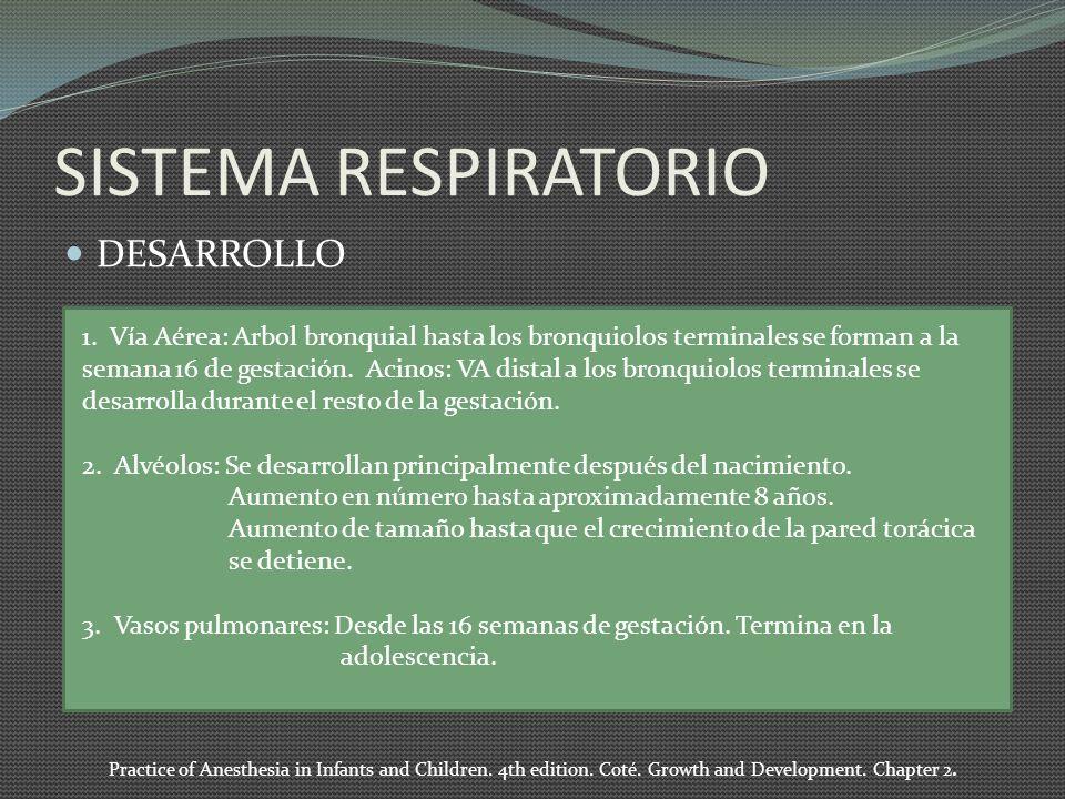 SISTEMA RESPIRATORIO DESARROLLO 1. Vía Aérea: Arbol bronquial hasta los bronquiolos terminales se forman a la semana 16 de gestación. Acinos: VA dista