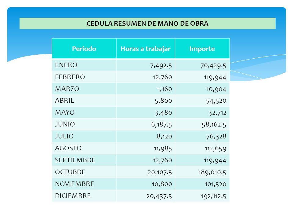 CEDULA RESUMEN DE MANO DE OBRA PeriodoHoras a trabajarImporte ENERO7,492.570,429.5 FEBRERO12,760119,944 MARZO1,16010,904 ABRIL5,80054,520 MAYO3,48032,