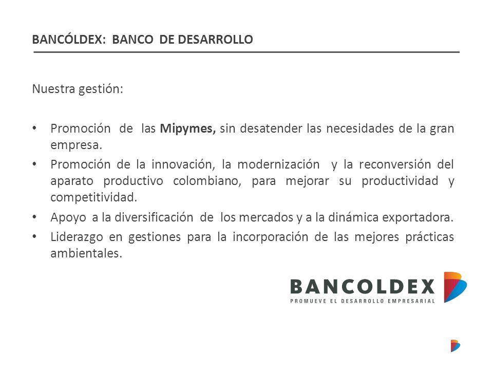 Nuestra gestión: Promoción de las Mipymes, sin desatender las necesidades de la gran empresa.
