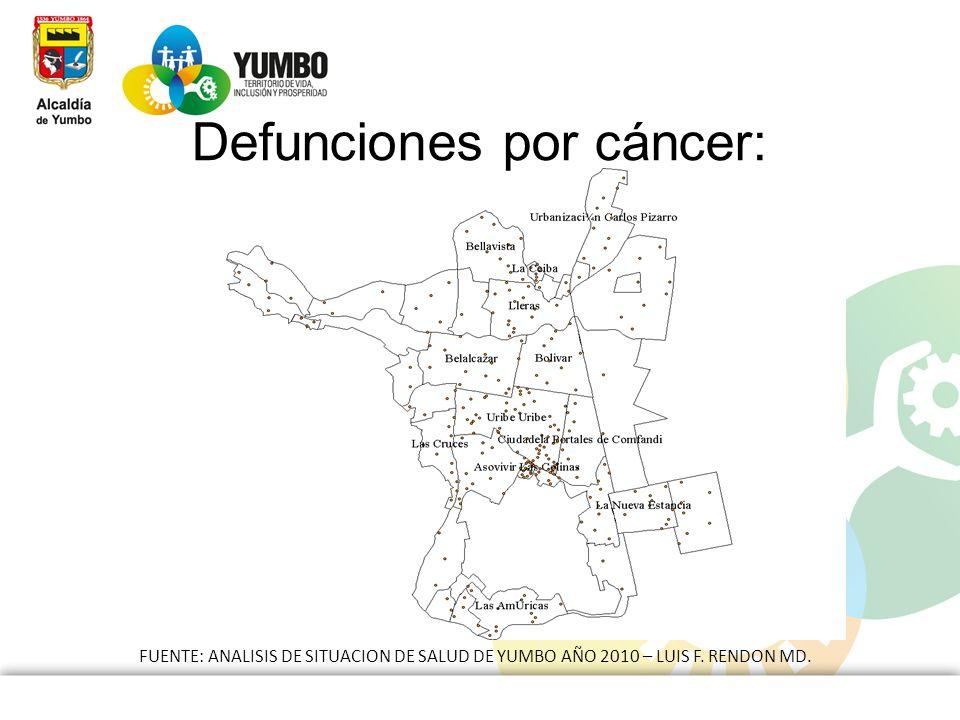 FUENTE: ANALISIS DE SITUACION DE SALUD DE YUMBO AÑO 2010 – LUIS F. RENDON MD. Defunciones por cáncer: