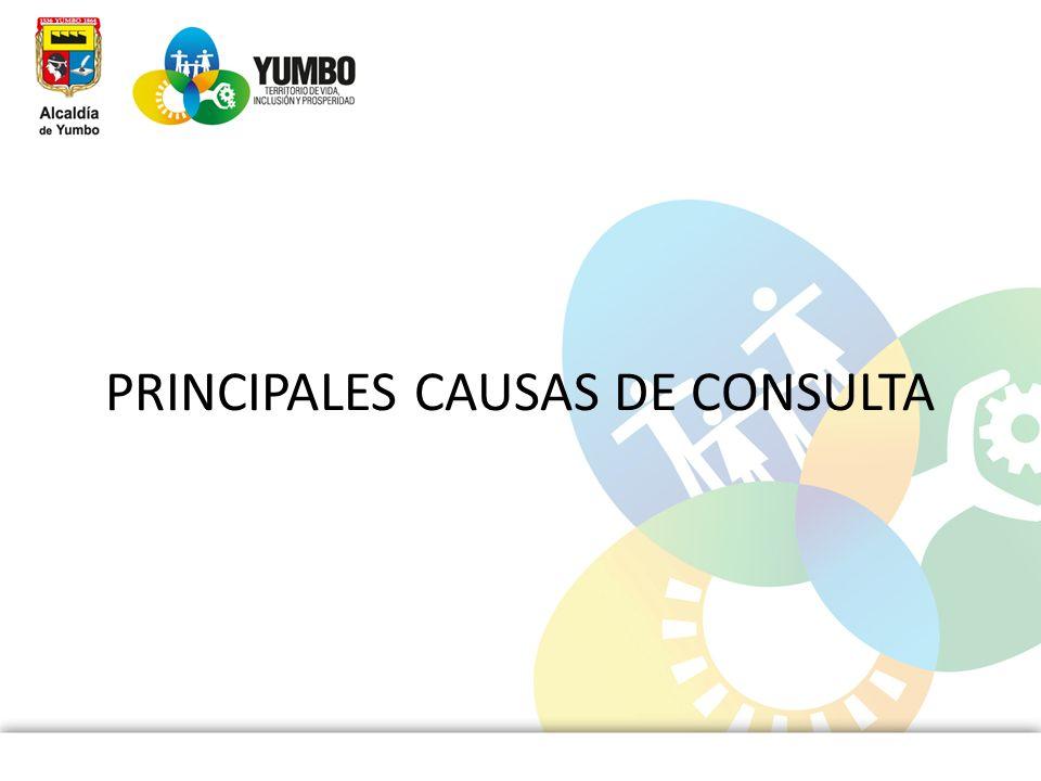 PRINCIPALES CAUSAS DE CONSULTA