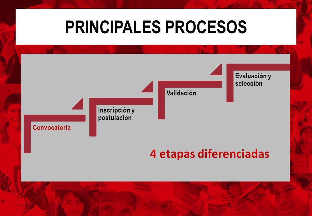 PRINCIPALES PROCESOS Convocatoria Inscripción y postulación Validación Evaluación y selección 4 etapas diferenciadas