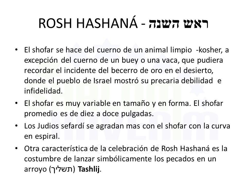 ROSH HASHANÁ - ראש השנה El shofar se hace del cuerno de un animal limpio -kosher, a excepción del cuerno de un buey o una vaca, que pudiera recordar e
