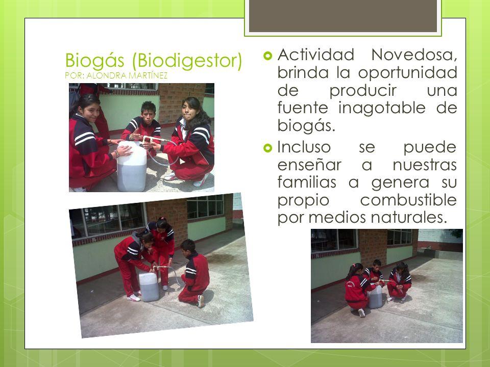 Biogás (Biodigestor) POR: ALONDRA MARTÍNEZ Actividad Novedosa, brinda la oportunidad de producir una fuente inagotable de biogás. Incluso se puede ens