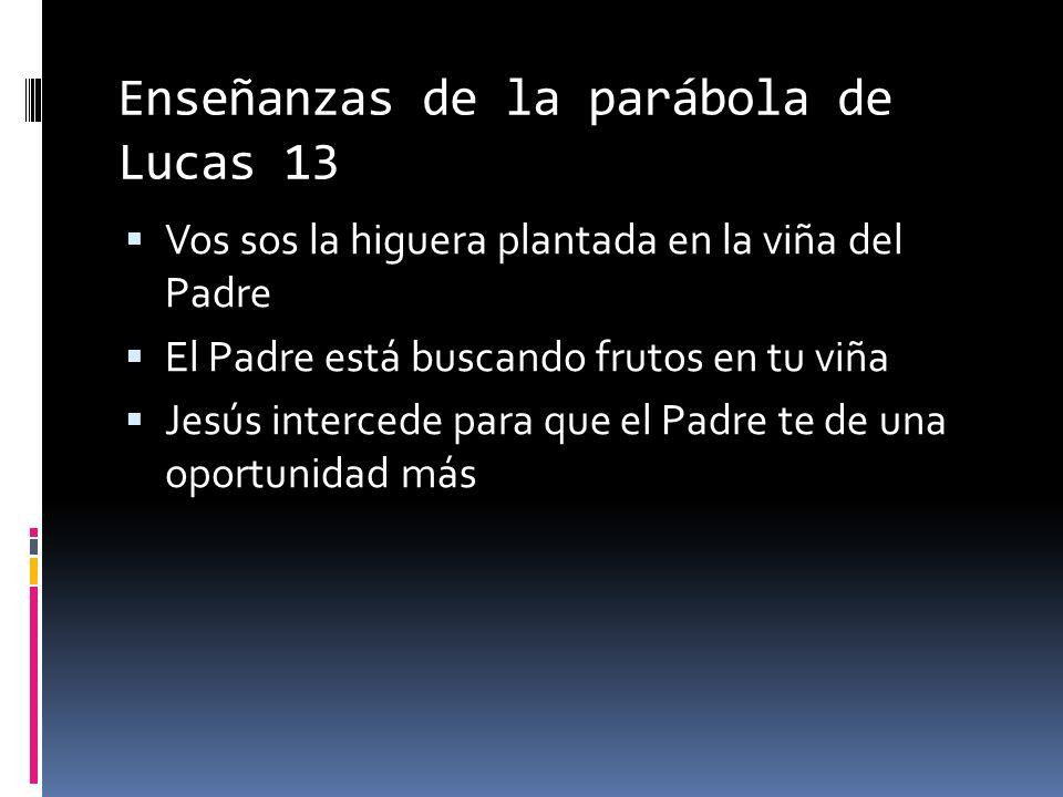 Enseñanzas de la parábola de Lucas 13 Vos sos la higuera plantada en la viña del Padre El Padre está buscando frutos en tu viña Jesús intercede para que el Padre te de una oportunidad más