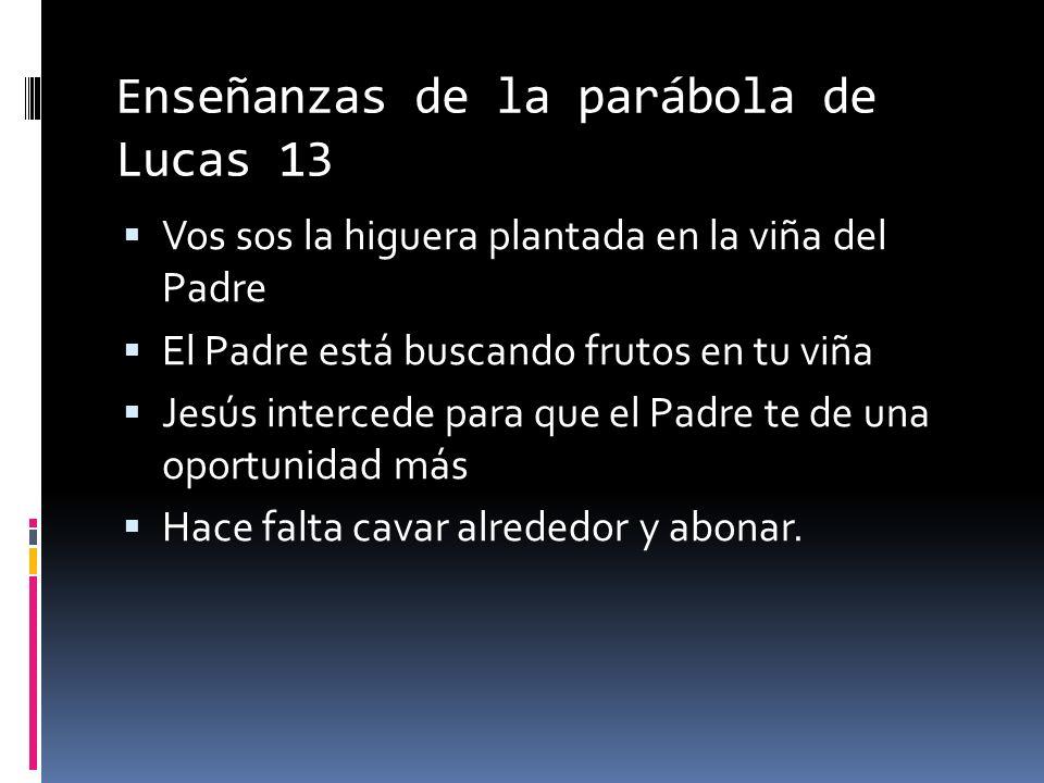 Enseñanzas de la parábola de Lucas 13 Vos sos la higuera plantada en la viña del Padre El Padre está buscando frutos en tu viña Jesús intercede para que el Padre te de una oportunidad más Hace falta cavar alrededor y abonar.