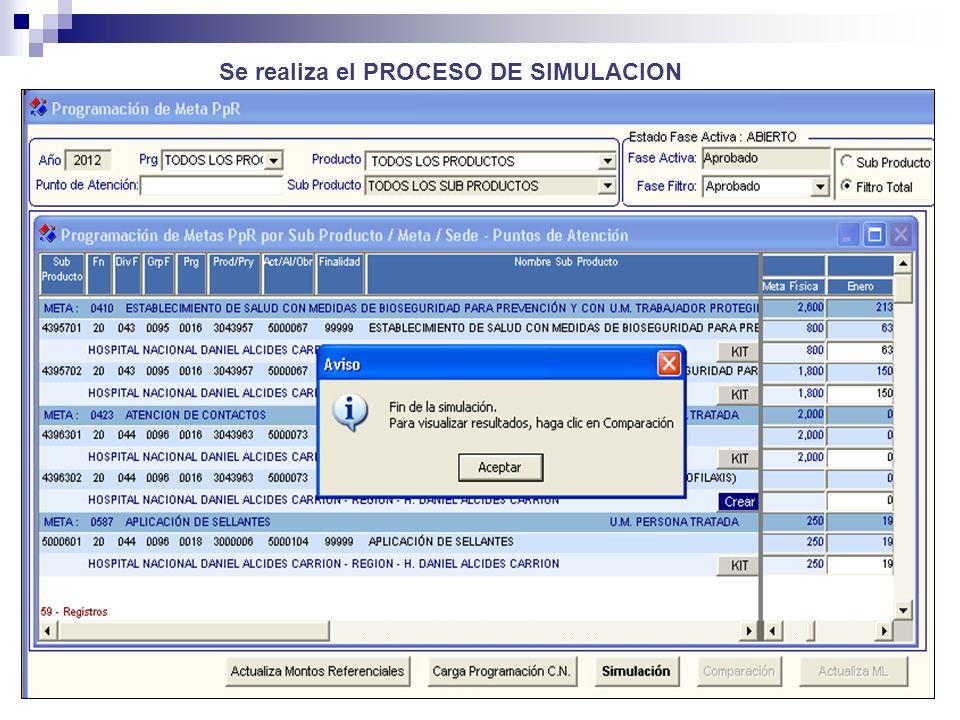 Se realiza el PROCESO DE SIMULACION