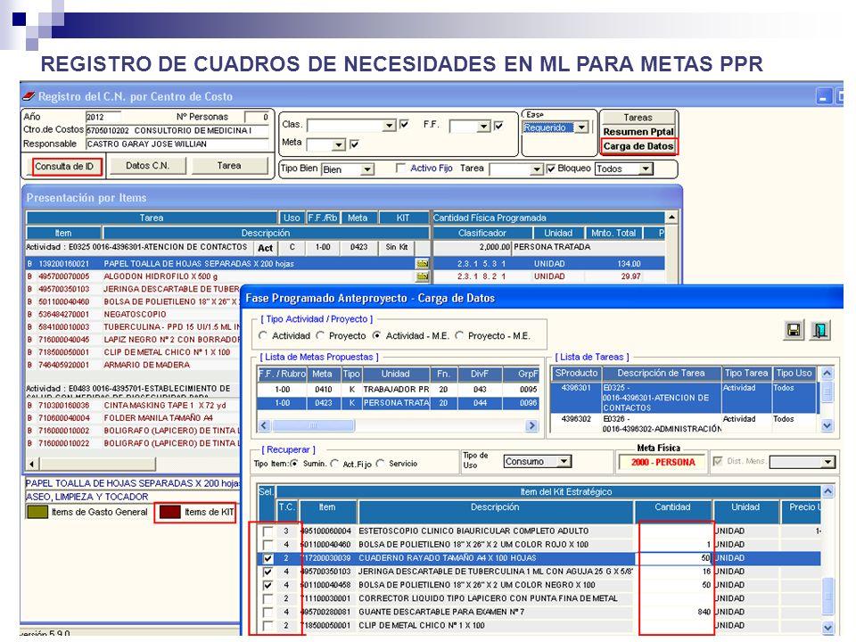 REGISTRO DE CUADROS DE NECESIDADES EN ML PARA METAS PPR