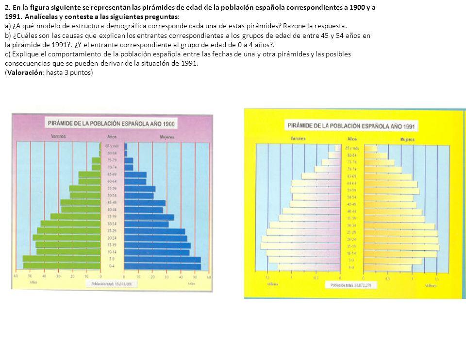 2. En la figura siguiente se representan las pirámides de edad de la población española correspondientes a 1900 y a 1991. Analícelas y conteste a las