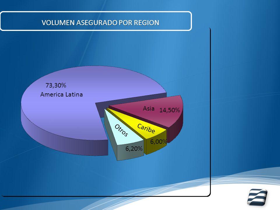 VOLUMEN ASEGURADO POR REGION America Latina Asia Caribe Otros