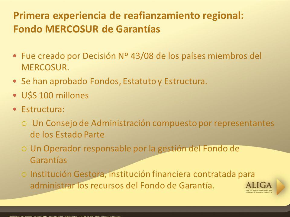 Primera experiencia de reafianzamiento regional: Fondo MERCOSUR de Garantías Fue creado por Decisión Nº 43/08 de los países miembros del MERCOSUR.
