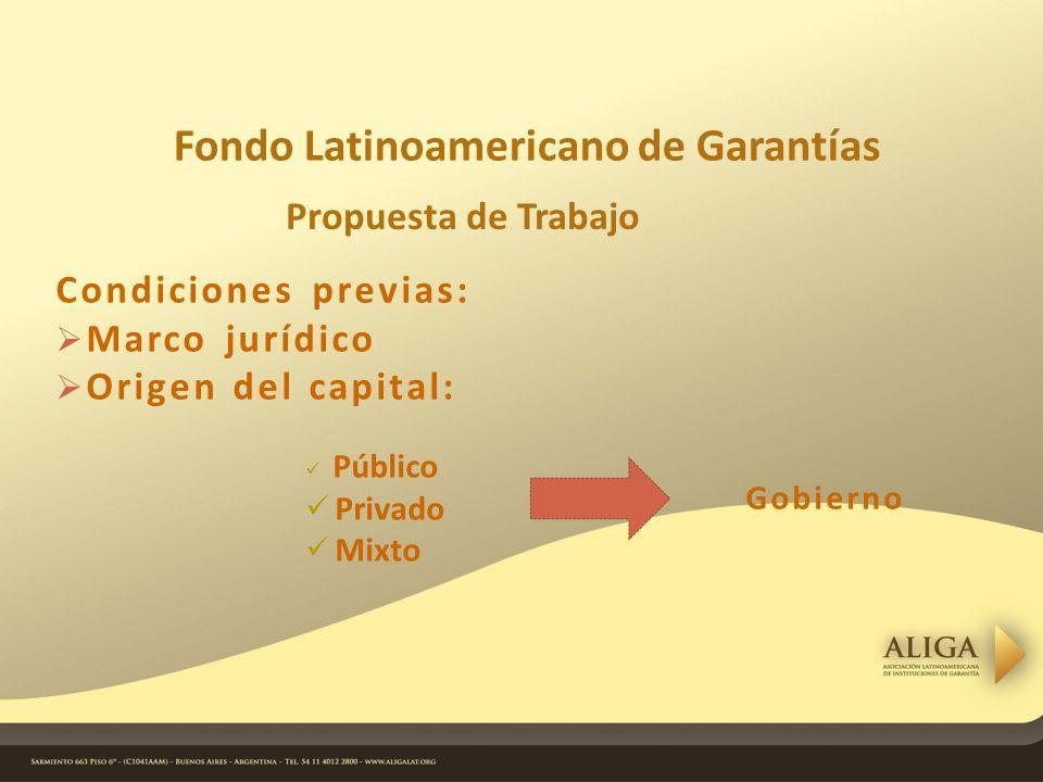 Condiciones previas: Marco jurídico Origen del capital: Público Privado Mixto Fondo Latinoamericano de Garantías Gobierno Propuesta de Trabajo