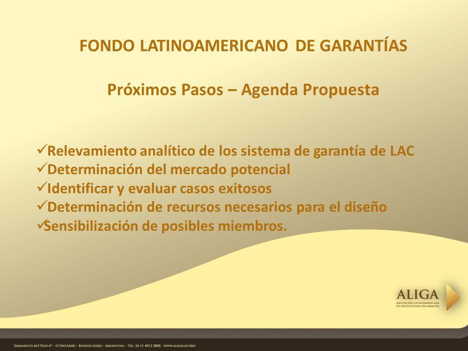 FONDO LATINOAMERICANO DE GARANTÍAS Próximos Pasos – Agenda Propuesta Relevamiento analítico de los sistema de garantía de LAC Determinación del mercado potencial Identificar y evaluar casos exitosos Determinación de recursos necesarios para el diseño Sensibilización de posibles miembros.