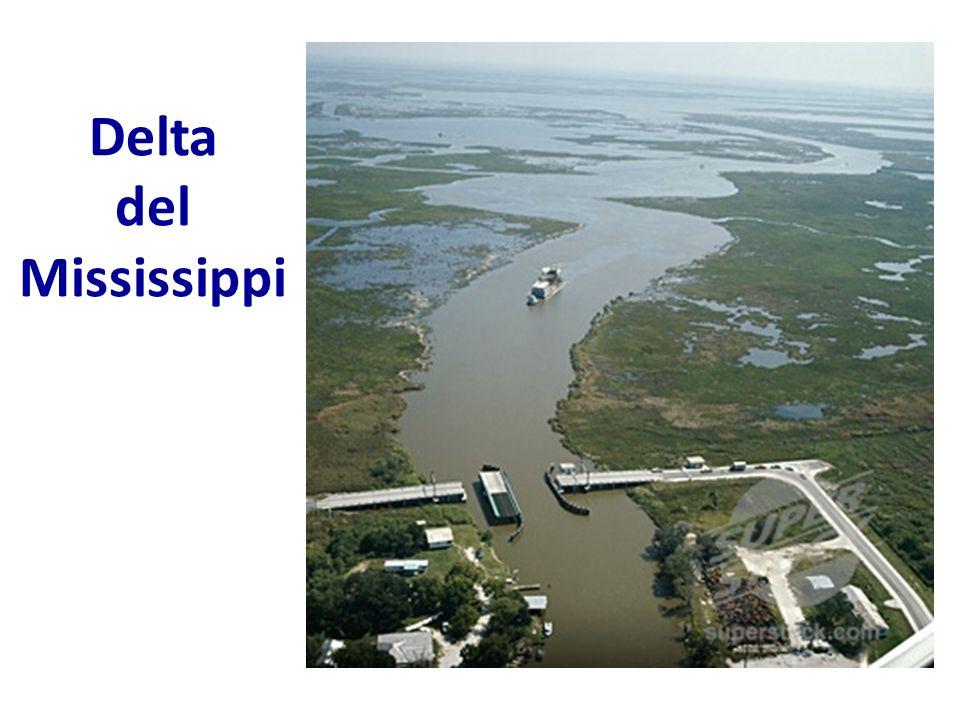 Delta del Mississippi