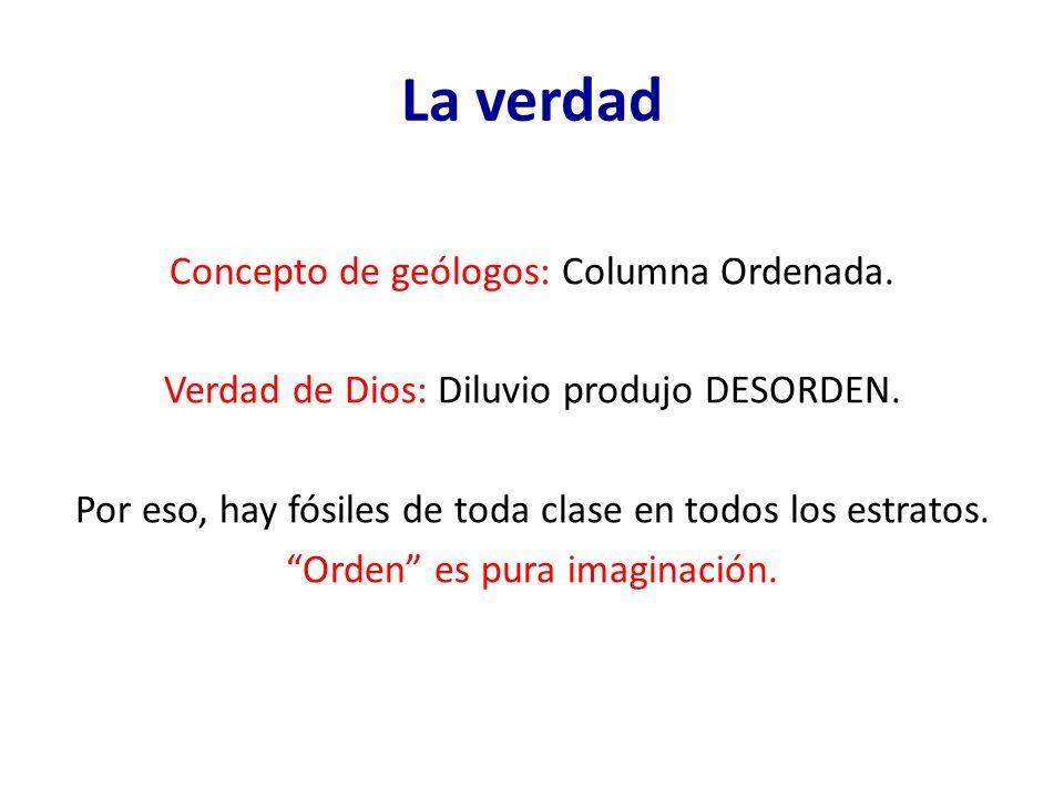 La verdad Concepto de geólogos: Columna Ordenada. Verdad de Dios: Diluvio produjo DESORDEN. Por eso, hay fósiles de toda clase en todos los estratos.