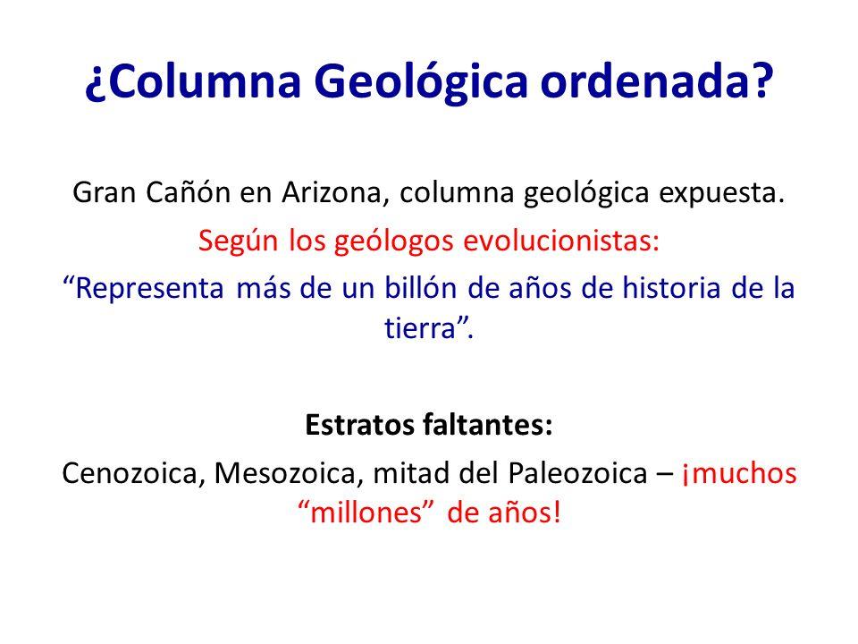 ¿Columna Geológica ordenada? Gran Cañón en Arizona, columna geológica expuesta. Según los geólogos evolucionistas: Representa más de un billón de años