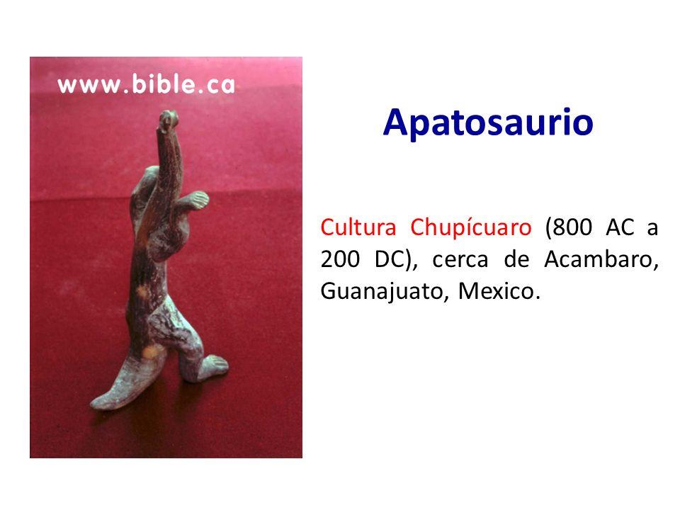 Apatosaurio Cultura Chupícuaro (800 AC a 200 DC), cerca de Acambaro, Guanajuato, Mexico.