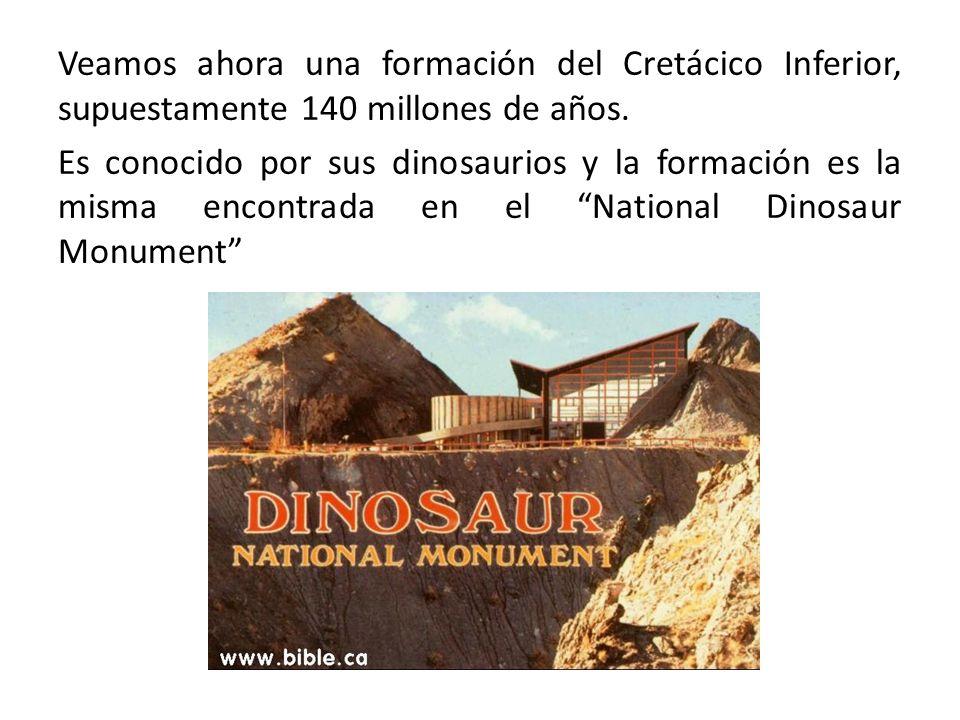 Veamos ahora una formación del Cretácico Inferior, supuestamente 140 millones de años. Es conocido por sus dinosaurios y la formación es la misma enco